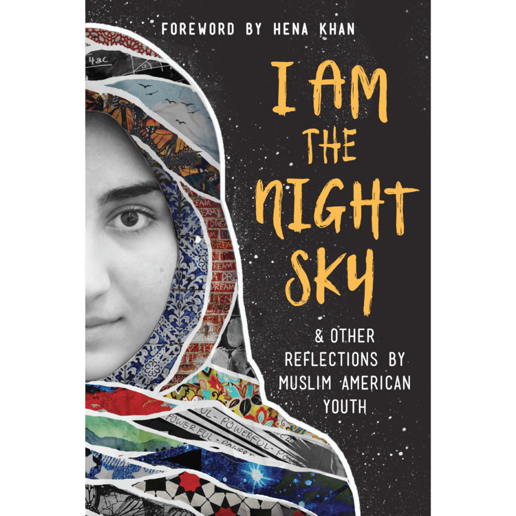 book cover of I Am the Night Sky