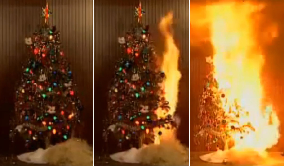 Keep Your Christmas Trees Watered Says Dublin Fire
