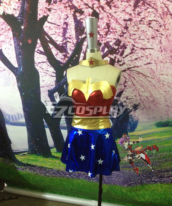 DC Comics The Justice League Wonder Woman Cosplay Costume