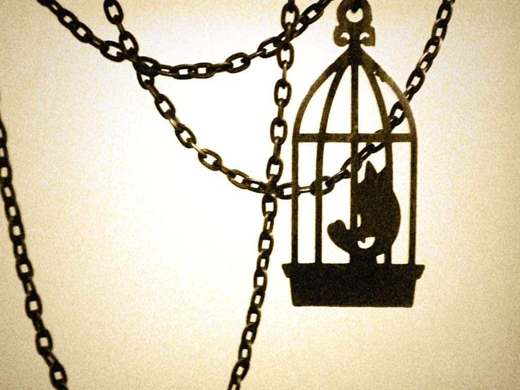 Poem Why The Caged Bird Sings