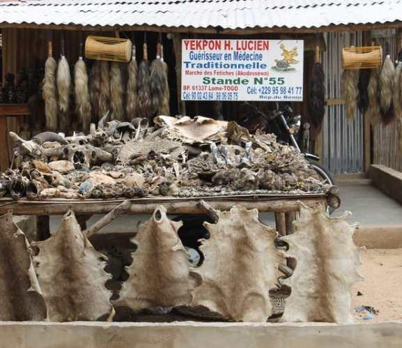 Voodoo in Togo