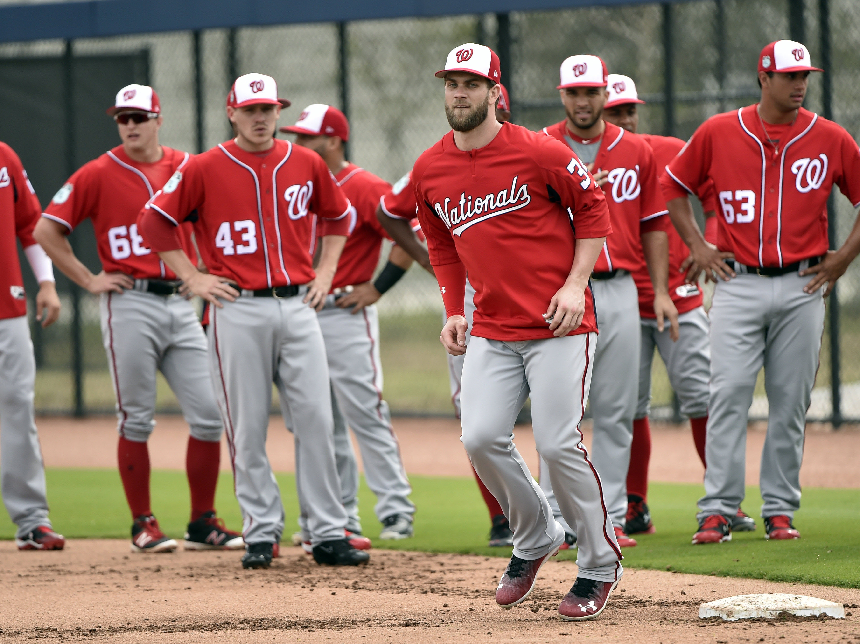 Image result for washington nationals 2017