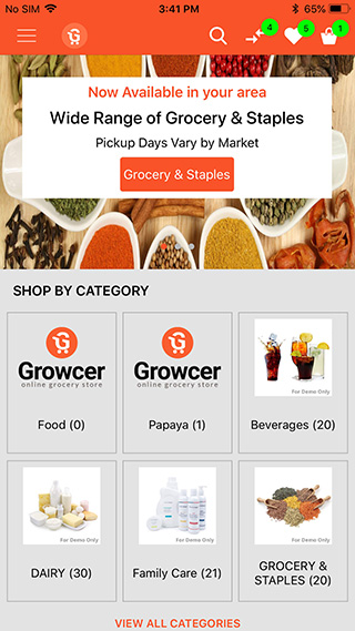 Online Grocery Ordering Websites