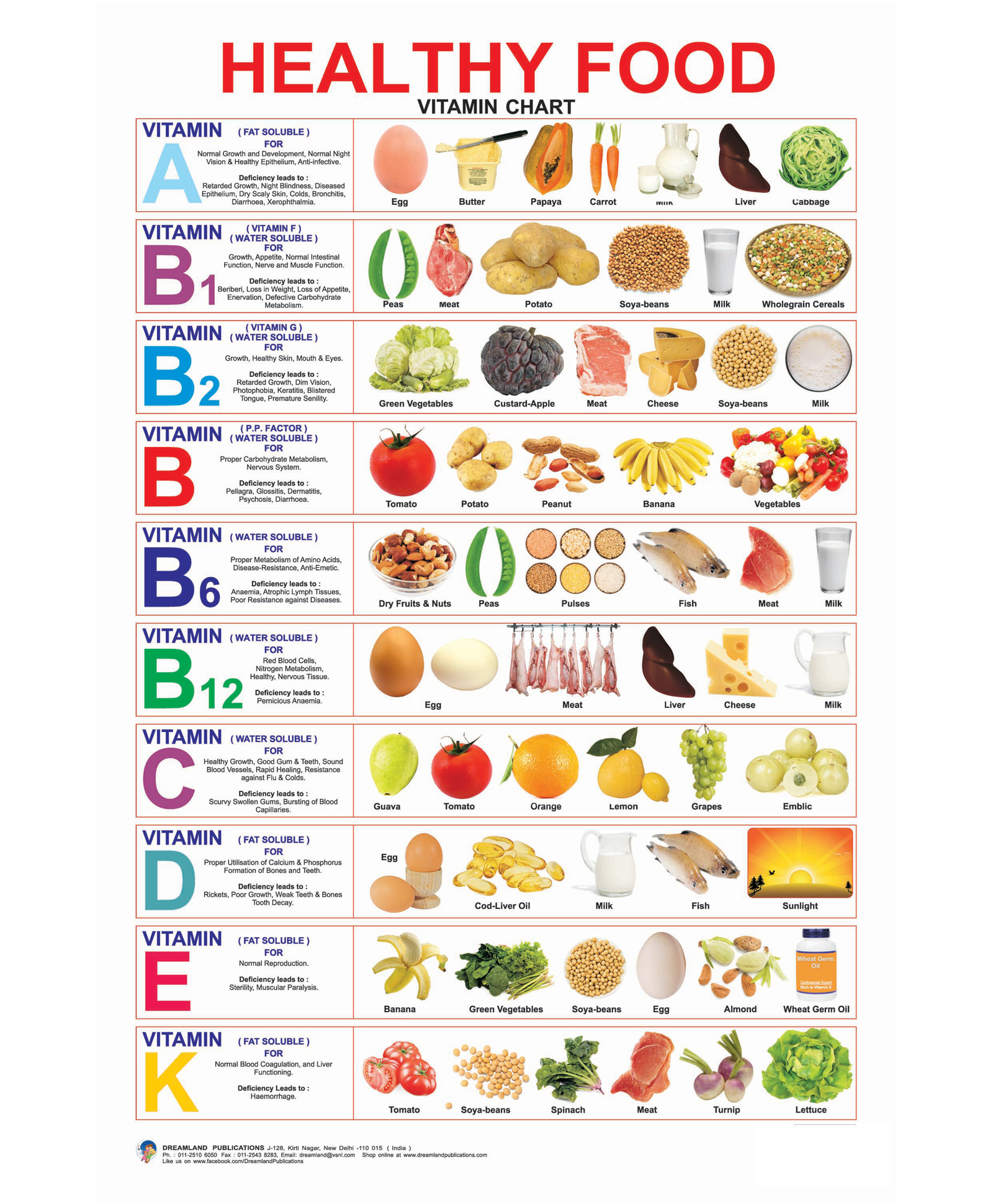 Healthy Food Vitamin Chart English Online In India Buy At