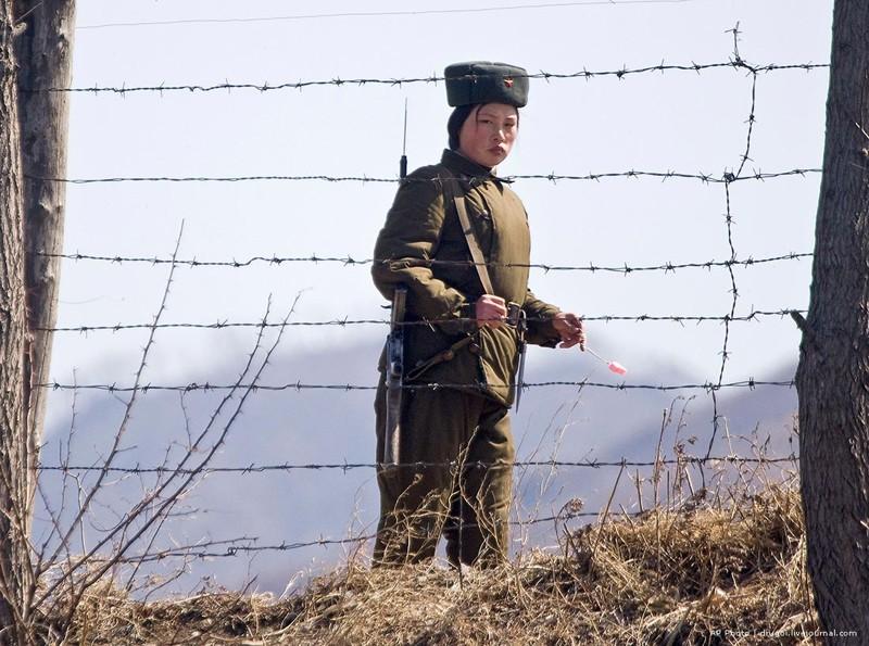 The story of a surviving prisoner North Korean prison Norway, Russia, USA, prison