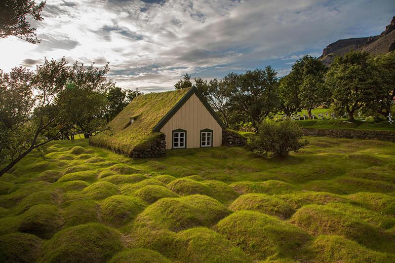 Исландия дом, крыша, озеленение, скандинавия