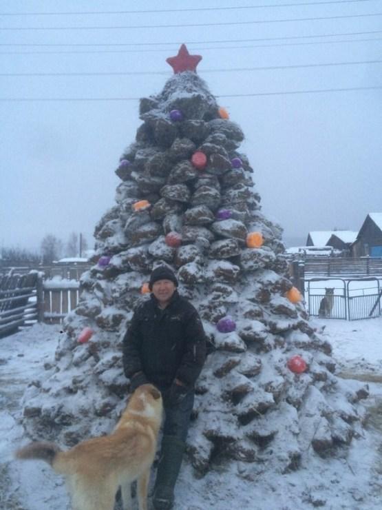 Ничего необычного, просто Новогодняя елка из навоза прикол, саха, юмор, якутия