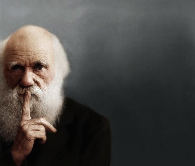 10. Нет переходных форм и поэтому Дарвин неправ история, лженаука, мифы, нло, факты, фальшивая история