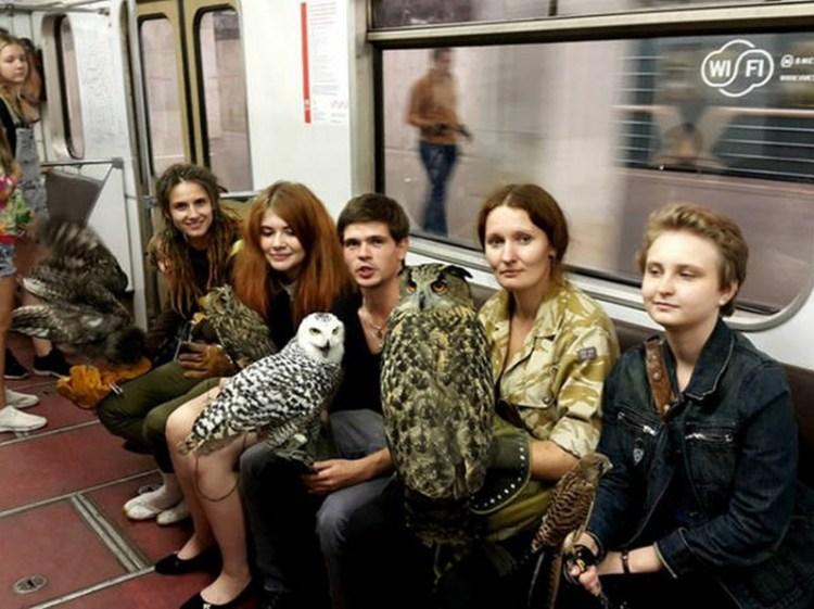 В метро Москвы  люди, метро, мир, подземка, прикол, фото, фрик, юмор