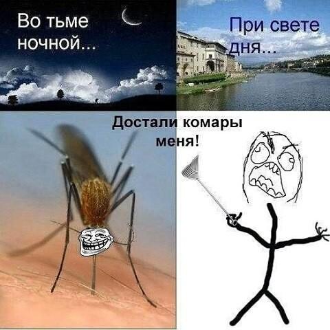 Ну и до кучи комары, сволочи, достали  бесит, возмущения, достало, жизнь, задолбали, надоело