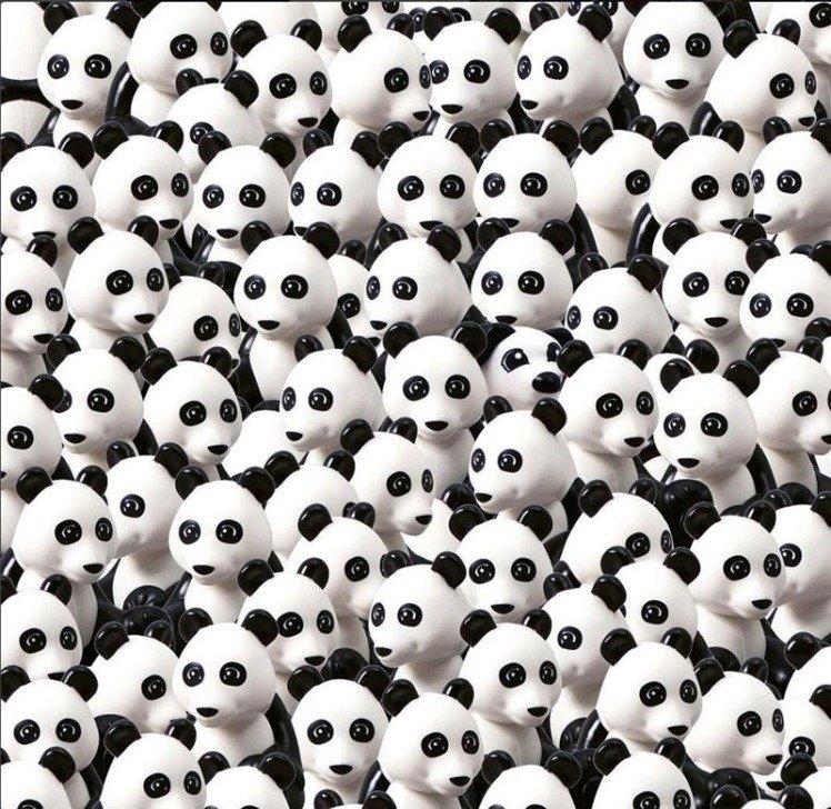 Ого, куча панд, но найти надо собаку внимательность, гениальность, головоломки, интересное