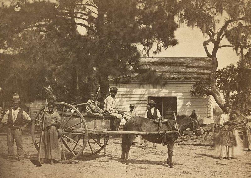 Подневольные на плантации Кассина-Пойнт на острове Эдисто, Южная Каролина, 1862 год  аукцион, история, продажа, прошлое, раб, сша, фотография