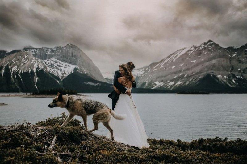 Кананаскис, провинция Альберта, Канада. Любовь, отношения, свадебное фото, свадьба, фото, фотограф, фотография