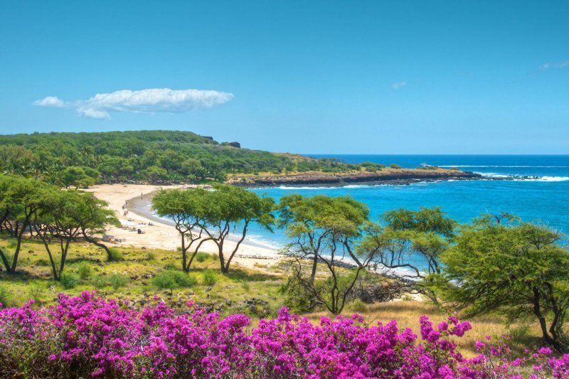 Островок не забудьте. Остров Ланаи, Гавайи $500,000,000 богато, вещи, дорого, миллиардеры, покупки
