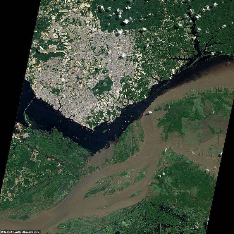 Бразилия джунглиіндегі Amazonian Jungle-де Solics және Rio Nevora бірігуінің бірігуі. Спутниктік сурет 2012 жылдың маусым айында жасалған