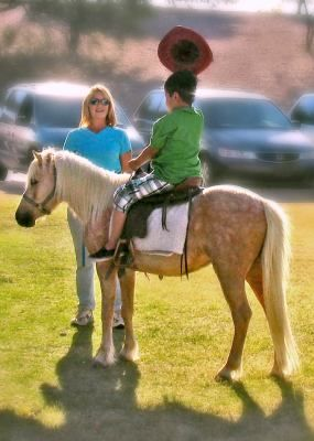 Pony Rides In Red Rock Az Step Up Into T L C Inc