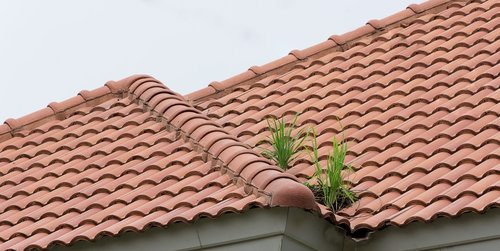 tile vs shingle roof pros cons