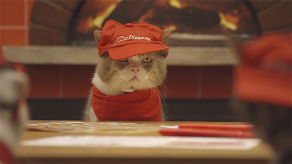pizza-cat-1