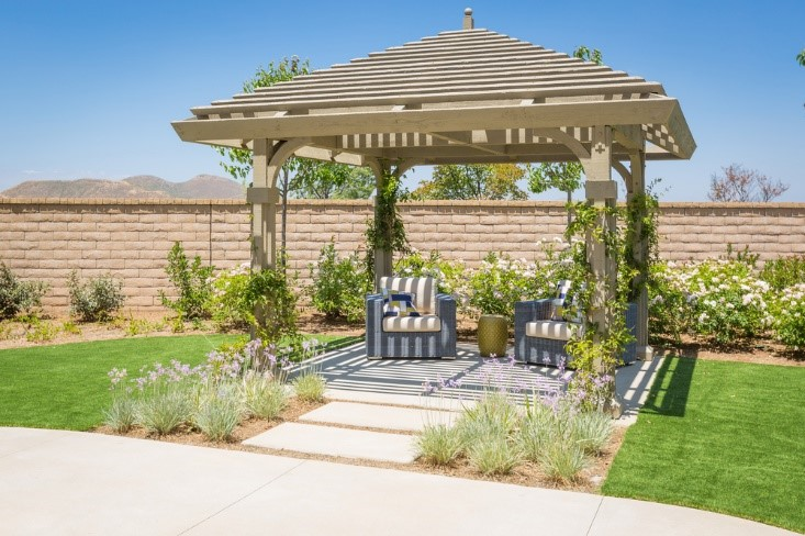 more shade in your backyard