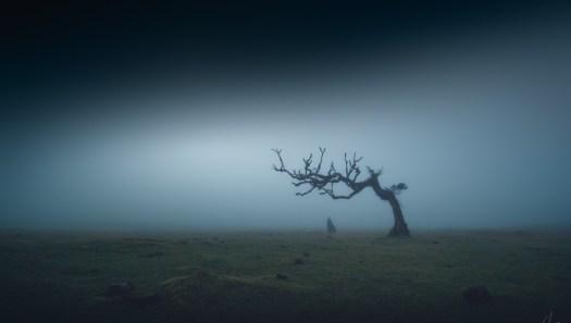 Five Composition Tricks for Capturing Simpler and Stronger Landscape Photos