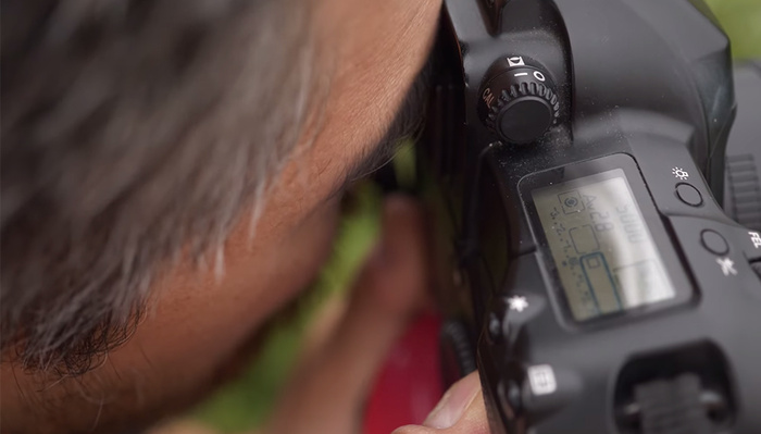 Would You Use Eye-Controlled Autofocus?