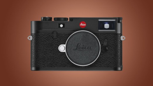 Breaking: Leica Officially Stop Using 'Master' and 'Slave' Terms