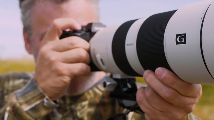 Using the Sony 200-600mm Lens for Bird Photography