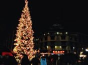 2016 Jack London Square Tree Lighting: Live Reindeer & Holiday Music | Oakland