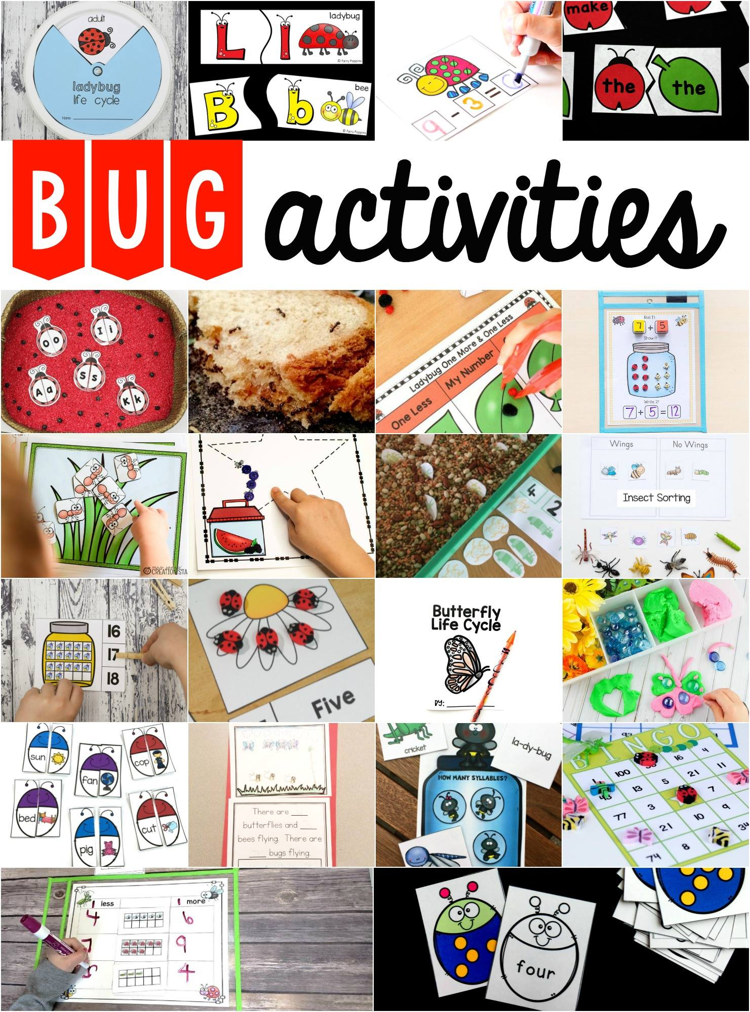 Preschool Insect Theme Sorting Worksheet Bug Activities