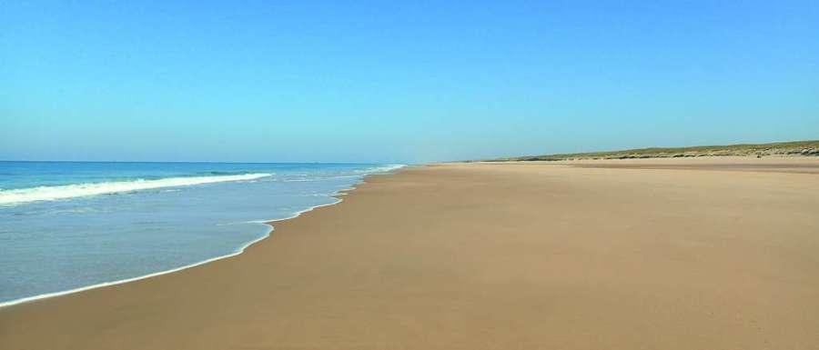 Sur la façade atlantique, la plage du Truc Vert sur la côte girondine fait partie des plages qui devraient disparaître d'ici la fin du siècle d'après l'étude européenne. Pourtant, les données d'observation montrent que le système s'engraisse depuis au moins plus d'un siècle. De plus, même en érosion chronique, l'espace d'accueil permettrait à tout le système « plage-dune » de migrer vers les terres et d'être ainsi conservé. © Stéphane Bujan, Epoc