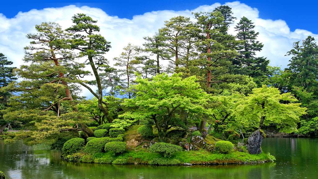 le jardin japonais ou les arbres sont rois