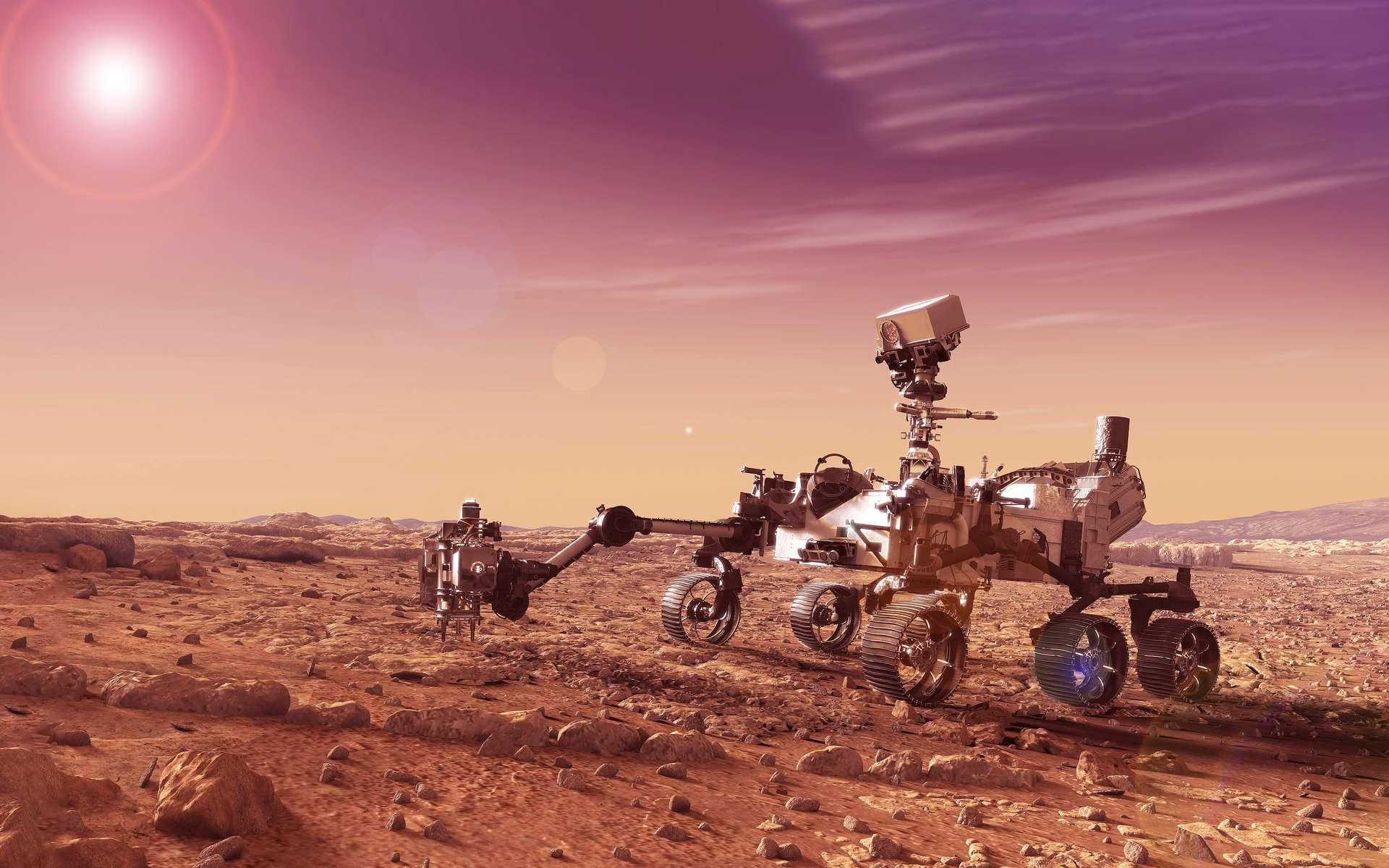 Des champignons à la surface de Mars… Vraiment?