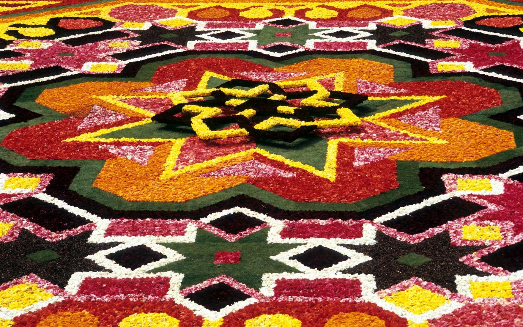 tapis de fleurs a bruxelles