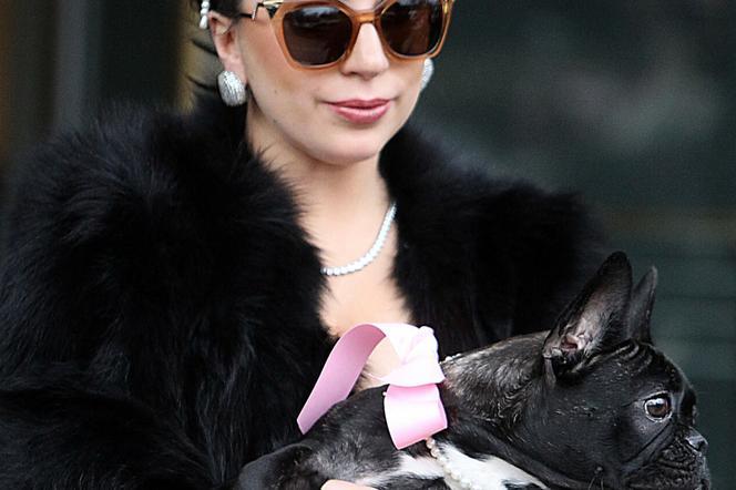 Lady Gaga and her dog