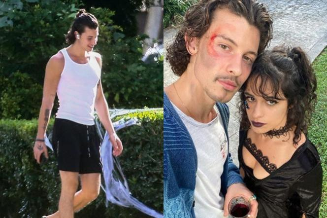 Shawn Mendes and Camila Cabello celebrate Halloween 2020