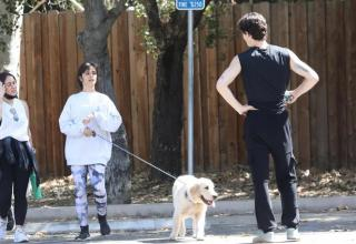 Shawn Mendes and Camila Cabello with their dog for a walk