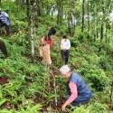 सन्दर्भ वन दिवसः अघिल्लो बर्ष रोपेका विरुवाको गोडमेलसंगै संरक्षण