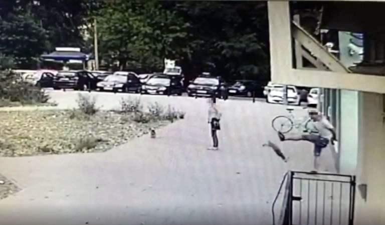 Strażnik miejski po cywilu kopnął małego psa tak, że poleciał parę metrów i upadł na chodnik.