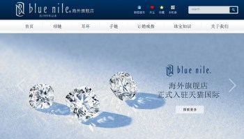 A diamond may be a girl's best friend, but Blue Nile isn't: Shares sink more than 20 percent as CEO calls Q4 results 'disappointing'