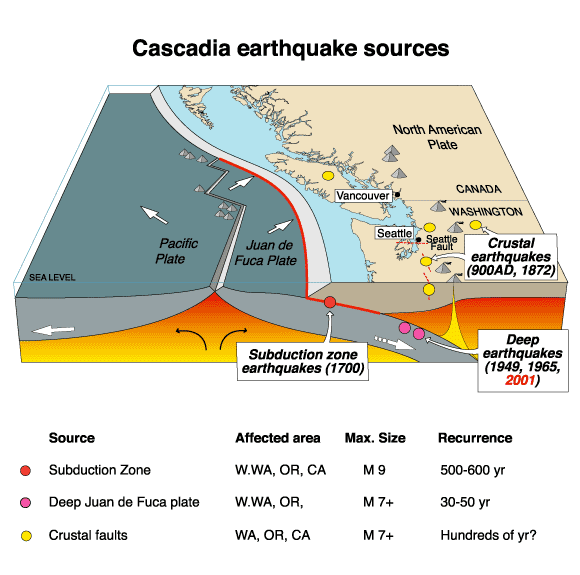 By Now Many Of Us Are Familiar With News Regarding The Imposing Cascadia Earthquake That Is Projected To Strike The Pacific Northwest In The Next 100 500