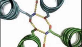 Scientists add twists to protein designs