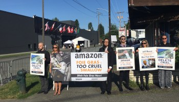 Prime Air cargo pilots and climate advocates to challenge Amazon at shareholder meeting