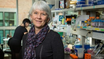 Fred Hutch researcher Dr. Julie Overbaugh receives prestigious Nature award for mentoring in science