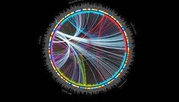 Meta graph