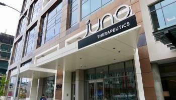 Juno Therapeutics agrees to pay $24M to stockholders in suit over disclosure of patient deaths