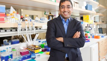 UW, Seattle Children's and Fred Hutch launch $50M Institute for Precision Medicine, using genetics to revolutionize health