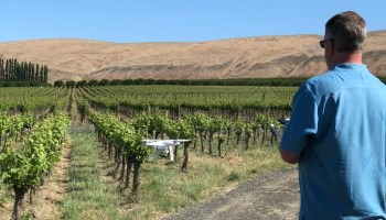 This startup just raised cash for its robots that help farmers monitor vineyards and crops
