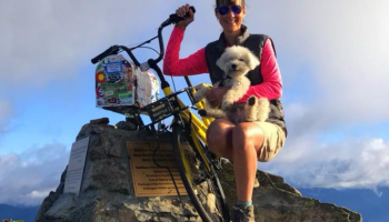 Another doggone bikeshare bicycle: Ofo reaches peak performance by being left on mountaintop