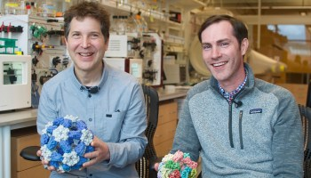 Amgen and University of Washington's Institute for Protein Design team up to build better cancer drugs
