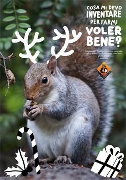 scoiattoloLav